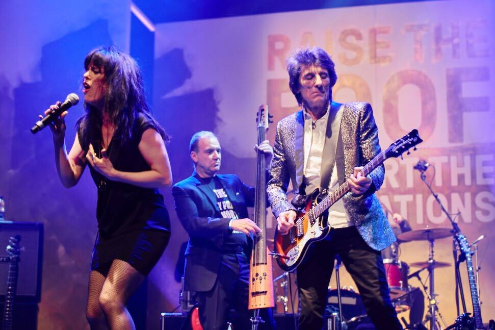 Ronnie Wood Danlectro 66 -1
